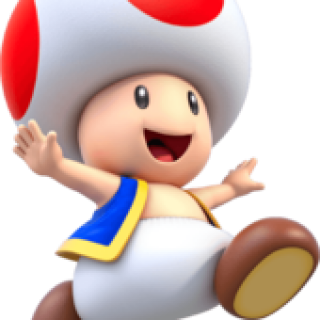 Toad isn't wearing a hat.