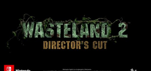 Wasteland 2: Director's Cut is coming to Switch.